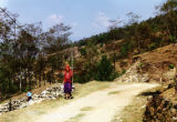 Pokhara (Nepal), woman walking along dirt path with girl watching