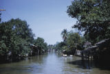 Thailand, people rowing boats on tree-lined klong in Bangkok