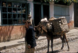 Cinarcik (Turkey), man leading donkey