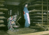 Japan, women taking full grown silkworms on straw holder