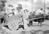 China, soldier posing near ox cart