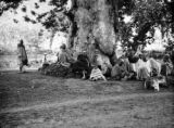 Jammu and Kashmir (India), villagers gathered at base of tree