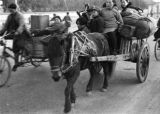 Nanjing (China), horse- and bicycle-drawn carts with refugees, Civil War of 1949