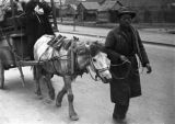 China, man leads horse drawing a cart, evacuation to Nanjing during the Civil War of 1949