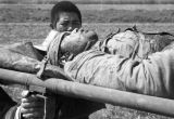 Shanghai (China), Nationalist soldier carried of field of battle on a stretcher, Civil War of 1949