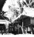 Chiang Kham (Thailand), house with thatched roof and bamboo walls