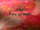 The Fire of Life, 1997