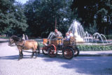 Berlin, pony cart ride