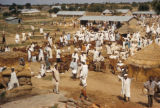Kano, view of scene at goat market