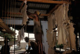Kano, workers drying goatskins