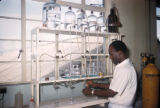 Ibadan, scientist working in laboratory