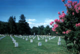 Washington, suburban Arlington, view of graves in Arlington National Cemetery