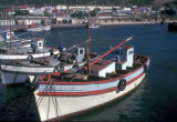 Cape Town, fishing boats in False Bay