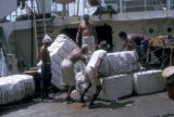 Barranquilla, workers loading cotton onto ship for export