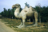 Beijing, Ming Tombs lion guardian statue along shen dao (spirit way)