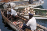 Nassau, conch harvesters in boats