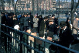 New York, Manhattan, men gathered in Seward Park