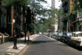 New York, Brooklyn, view of residential street
