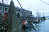 Boston, view of fishing boats at Boston Fish Pier