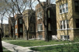Chicago, duplexes on residential Cortland Street