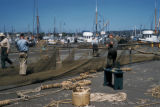 Seattle, men mending nets at Fisherman's Terminal on Salmon Bay