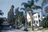 Los Angeles, residential street in Hollywood