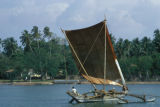 Negombo, outrigger fishing boat