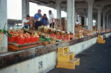Atlanta, State Farmers Market produce on display