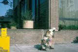Savannah, street woman with cart of belongings