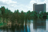 Orlando, suburban Lake Buena Vista, view of hotel