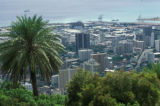 Honolulu, view of downtown from Round Top