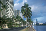 Honolulu, buildings and palms along Ala Wai Boulevard