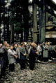 Nikko, ceremonies at a shrine