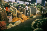 Mexico City, Merced farmers' market