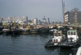 Rotterdam, tugboats and barges