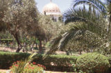 Haifa, Bahai Shrine