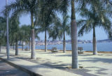 Luanda, palm-lined waterfront