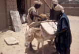 Timbuktu, men loading donkey with slabs of mined salt