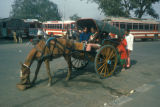 Delhi, horse-drawn carriage