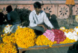Jaipur, flower seller