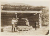 Farmers processing grains in Svanetia