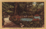 View of a beauty spot in the ravine, Grant Park, Milwaukee, Wis. -- D-22