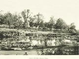 Humboldt Park (South Park) lily pond
