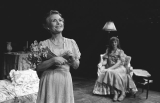1982-1983: The Glass Menagerie