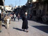 Pack-donkeys on sreet in Damascus, Syria