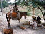 Woman on donkey in India