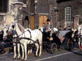 Horse-drawn carriage on street in Vienna