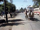 Horse-drawn wagon on street in Samarkand, Uzbekistan