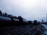 Covered hopper cars in Prince Rupert, Canada