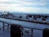 Ferry slips in the Strait of Georgia, Tsawwassen, British Columbia